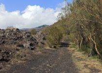 Monte Gemmellaro