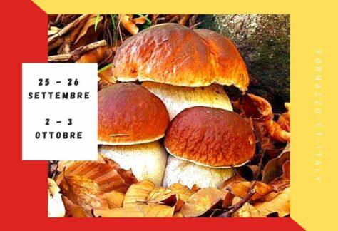 Festa del fungo porcino